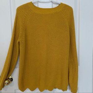 Sweaters - Zara Knit Sweater
